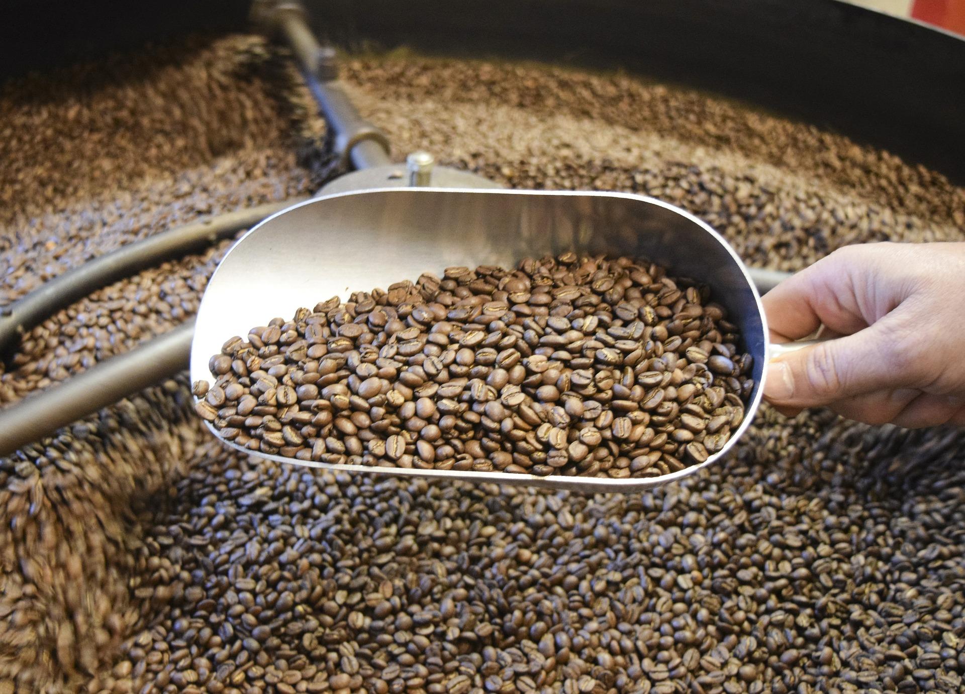 Spezialitätenkaffee vs. Industriekaffee
