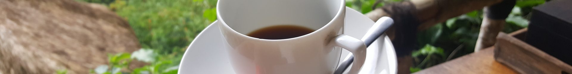 Endlich mal auf einer Kaffeeplantage